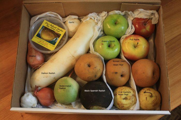 fruit-box1